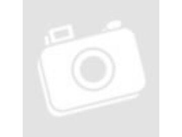 Örök Habrózsa Maci LED világítással